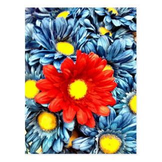 Färgrika orange röda blommor för blåttGerber daisy Vykort