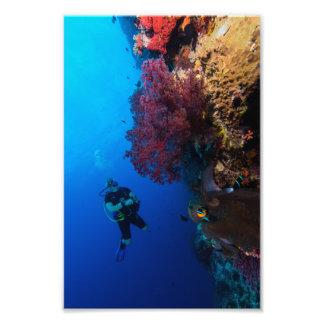Färgrikt tryck för korallhavsfoto