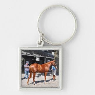 Fasig Tipton årsgammal djurungeSalar Fyrkantig Silverfärgad Nyckelring
