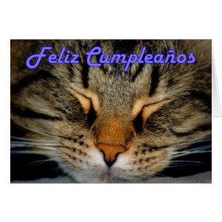 Feliz Cumpleaños spansk födelsedag med kattungen Hälsningskort
