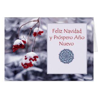 Feliz Navidad, spansk julkort, bär Hälsningskort