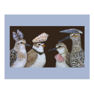 Festa Shorebirdsvykortet Vykort