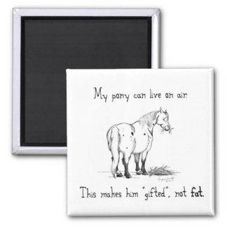 Fet ponnymagnet