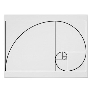 Fibonacci Spiral Golden Ratio