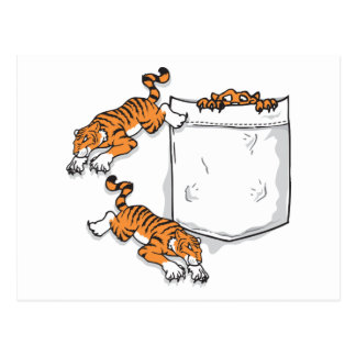 Fick- tigrar vykort