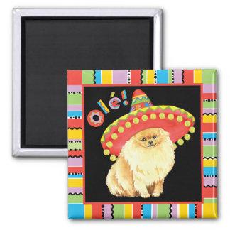 Fiesta Pomeranian Magnet