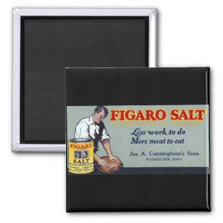 Figaro salt annons Washington, IA Magnet