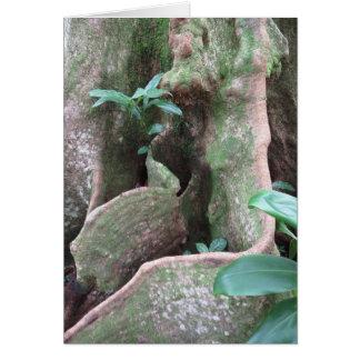Figträd rotar hälsningskort