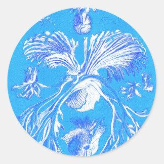 Filicinae på blåttbakgrund runt klistermärke