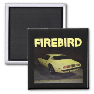 Firebird magnet