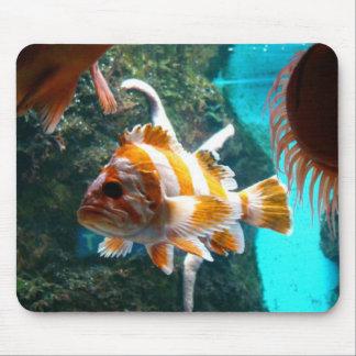 fisk Mousepad Mus Mattor