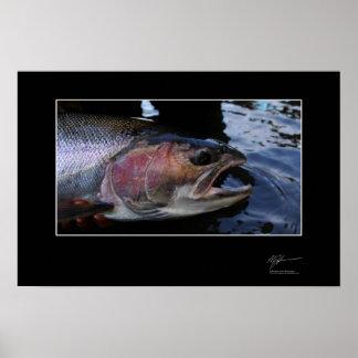 Fiska för steelhead in BC Poster