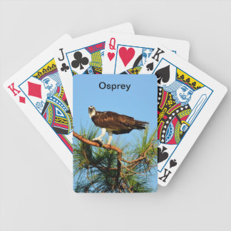 Fiskgjuse i vilden spelkort