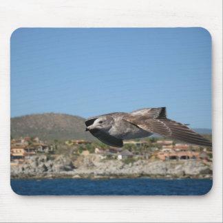 Fiskmås i flyg musmatta