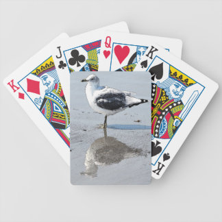 Fiskmås - leka kort spelkort