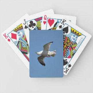 Fiskmås som flyger uppochnervänd rolig djurlivfoto spelkort