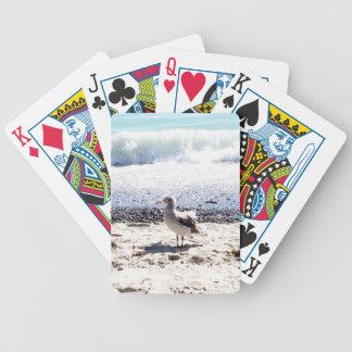 fiskmås vid hav på strandbilden spelkort