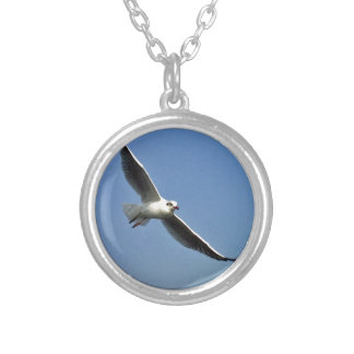 Fiskmåsar är härliga fåglar silverpläterat halsband