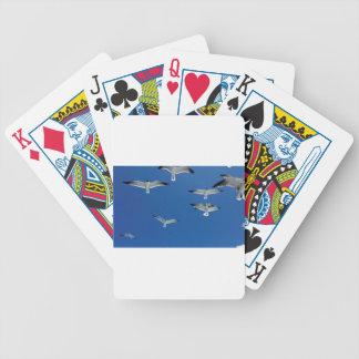 fiskmåsar i himmlen spelkort