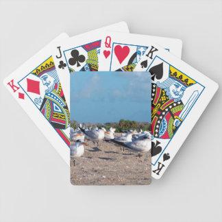 Fiskmåsar som står på det jämna strandögat spelkort