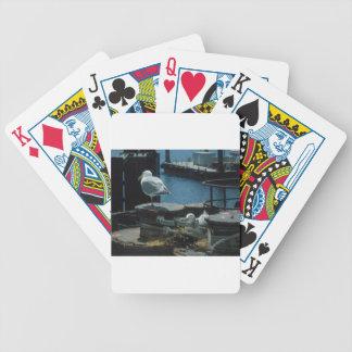 Fiskmåsar Spelkort
