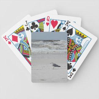 Fiskmåscykel som leker kort spelkort
