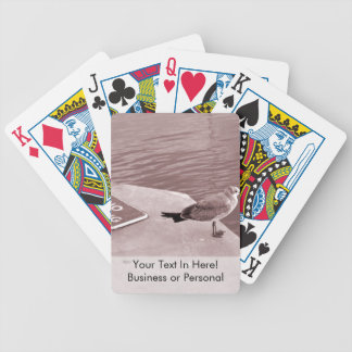 fiskmåsen ingen fiskecant läste sepia spelkort
