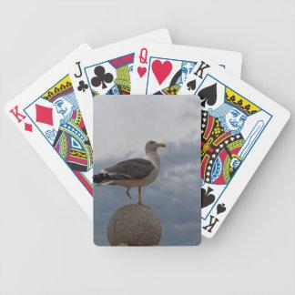 Fiskmåsen med en lägger benen på ryggen på en boll spelkort