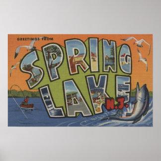 Fjädra sjön, nya - jerseyen - stora brevplatser posters
