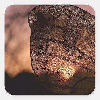 Fjäril med solnedgång av Shirley Taylor Fyrkantigt Klistermärke