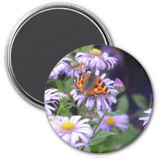 Fjäril på blommor magnet rund 7.6 cm