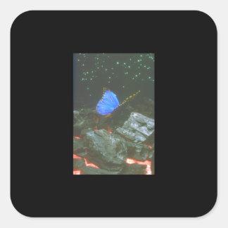 Fjäril på stenar. (butterfly_Spaceplatser Fyrkantigt Klistermärke