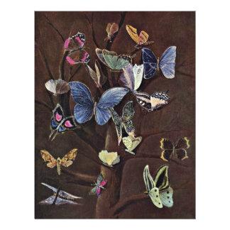 Fjärilar av Kaulbach Wilhelm Von (bäst kvalitets-) Flygblad Designs