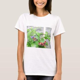 Fjärilar T-shirts