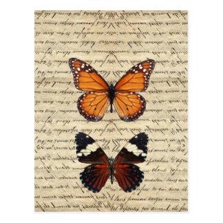 fjärilar vykort