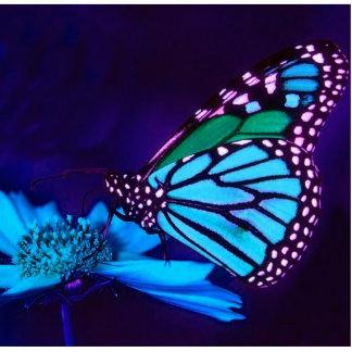 Fjärilen i blått tänder fotoskulptur photo sculptures