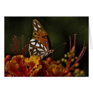 Fjärilsvattenfärg på kanfas OBS kort