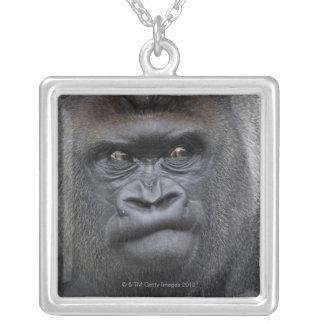 Flachlandgorilla gorillagorilla, silverpläterat halsband