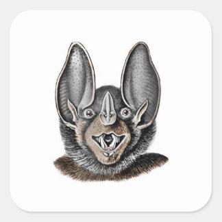 Fladdermöss med stort öron fyrkantigt klistermärke