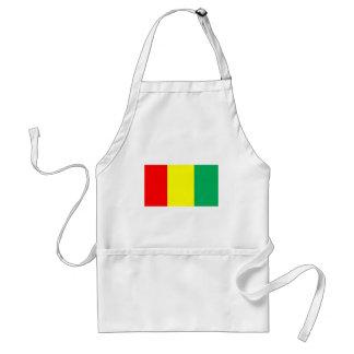 Flagga av Guinea Förkläde