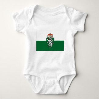 Flagga av Styria, Österrike T Shirts