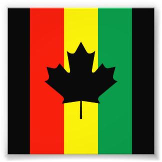 Flagga för Rasta Reggaelönnlöv Fotografi