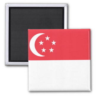 Flagga för Singapore medborgarevärld Magnet
