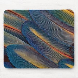 Fläktade ut scharlakansröda Macawfjädrar Musmatta