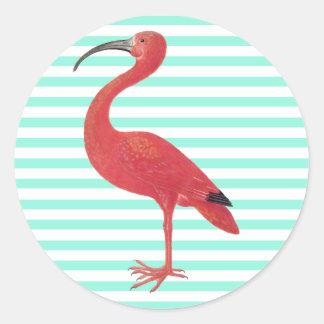 Flamingo- & krickarandar - konstklistermärke runt klistermärke