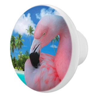 Flamingo och strand knopp