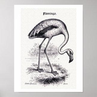 """""""Flamingo"""" vintageillustration Poster"""