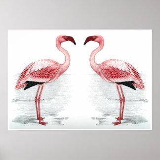 FLAMINGOEN PARKERAR trycket för Flamingoflockkonst Poster