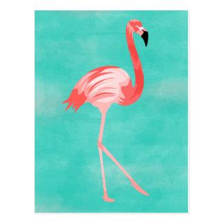 Flamingofågel Vykort