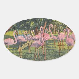 Flamingos på Miami, Florida Ovalt Klistermärke